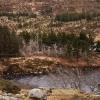 366-179 - Rugged Landscape