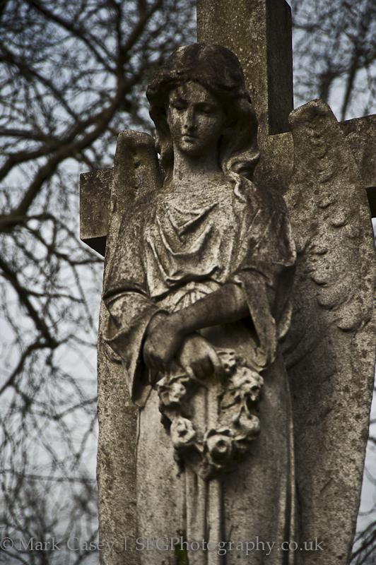 angel-001.jpg