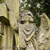 angel-012