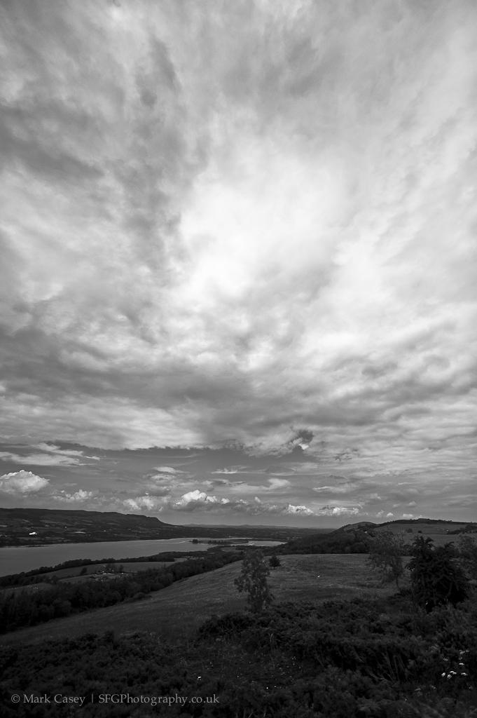 B&W Landscape -002