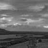 B&W Landscape -001