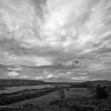 B&W Landscape -003
