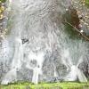 Man-Made Waterfall - Above