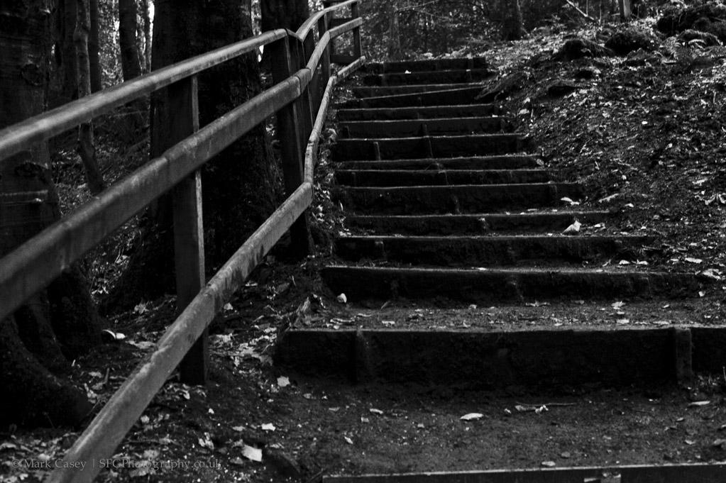Downhill 003