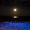 Moonrise #3
