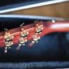 Takamine EAN20CX -022